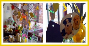 A 'Memory Tree' in a Spiritualist church with messages for loved ones.