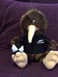 Kevin the Kiwi  (Picture by Candice Lingam-Willgoss)