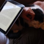 iPad book reader
