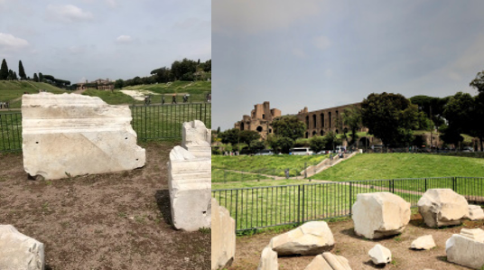 Figure 10: marble fragments of the Arch of Titus dot the site