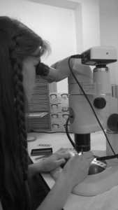 Felicity Mundy, working at the microscope on her Nuffield Placement
