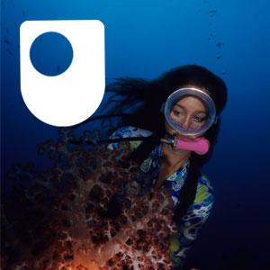 A diver inspecting a coral reef.