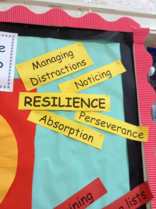 Concepts relevant to understanding resilience in Mathematics.