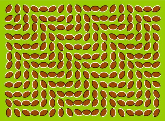 Optical Illusion by Aaron Fulkerson https://www.flickr.com/photos/roebot/1461507866