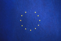 EU flag with 1 star removed