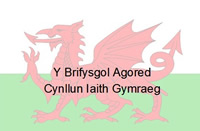 Welsh words on dragon background