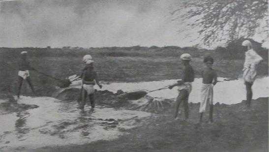 Cultivators harvesting water, western India, early 20th century, image