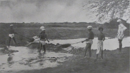 Harvesting water in South India, Bombay Agricultural Department Bulletin 1910. Image credit: British Library