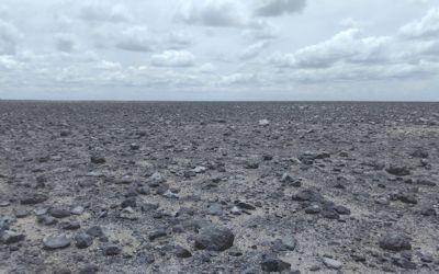 Botswana Dessicated area