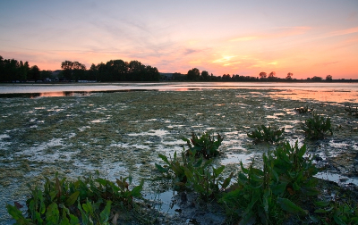 Evening flood plains of river Thames near Oxford