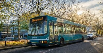 Bus. Pajor Pawel/Shutterstock