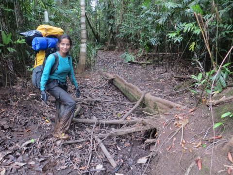Sunitha Pangala in wetladn environment