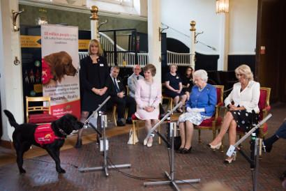 Demonstration at Buckingham Palace. (L-R) Claire Guest, CEO MDD; Betsy Duncan Smith, MDD Chairman of Trustees; Her Majesty The Queen; HRH Duchess of Cornwall