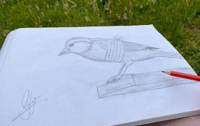 Tied bird: A drawing by a young asylum seeker from Pakistan