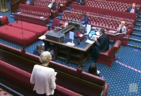 Julia Cumberledge calling for justice (screenshot). Photo Credit: APPG Horomone Pregnancy Tests (@APPGHPTs Twitter) Posted: 2 Sept 2020