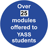 YASS stat graphic - number of modules offered to YASS students