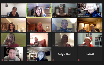 BG REACH contributors meeting over video